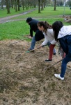 Preparing for seeding