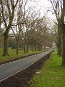 Rusholme Path repaired Autumn 2013